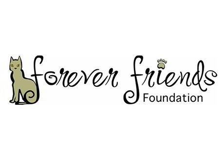 forever-friends-foundation